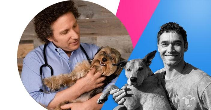 Doggy-Dan-Podcast-Show-NewDesign-FEATURED-HolisticVetCareRichter