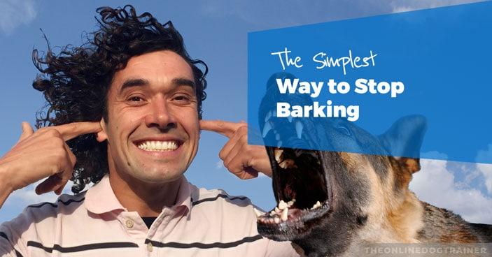 Dan-Barking-German-Shepherd-Type-HEADLINE