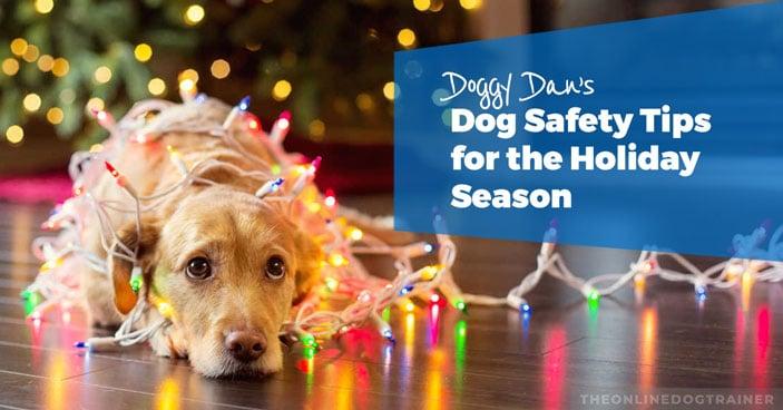 Doggy-Dan's-Dog-Safety-Tips-for-the-Holiday-Season-HEADLINE