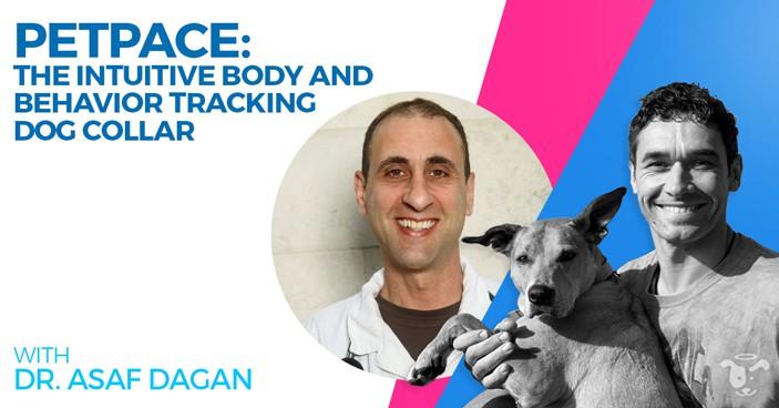Doggy-Dan-Podcast-Show-HEADLINE-Intuitive-Body-and-Behavior-Tracking-Dog-Collar